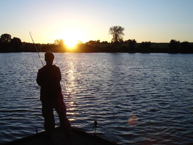 Fishing 4 carp carp fishing tips and tricks for Fishing tips and tricks